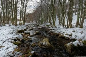 Ruisseau de l'Estagnolette - Cliquer pour voir la photo en haute résolution