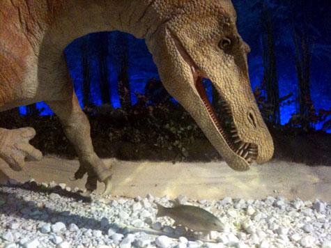 Exposition La faim des dinosaures