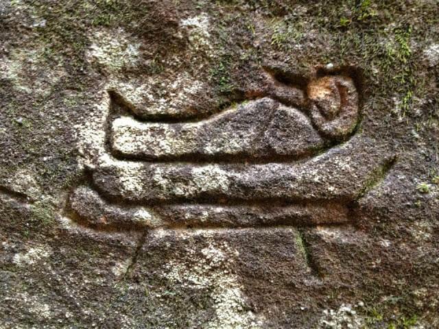 origine-de-lhumanite Des glyphes antiques découverts en Australie pourraient réécrire l'histoire