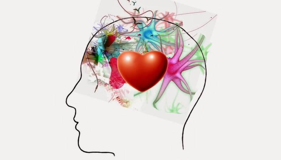 Intelligence émotionnelle,  alternative à l'IA ?