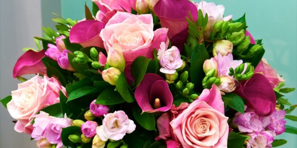 Moncherieflowers-shanklin – Flowers for all occasions