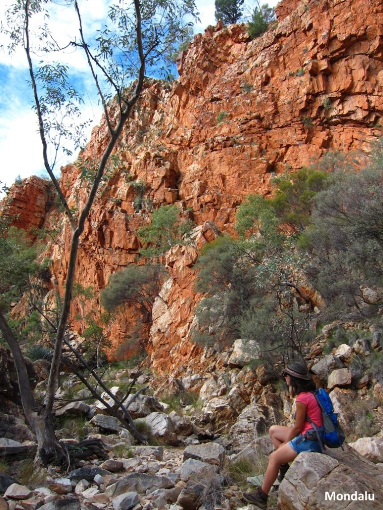 MacDonnell National Park