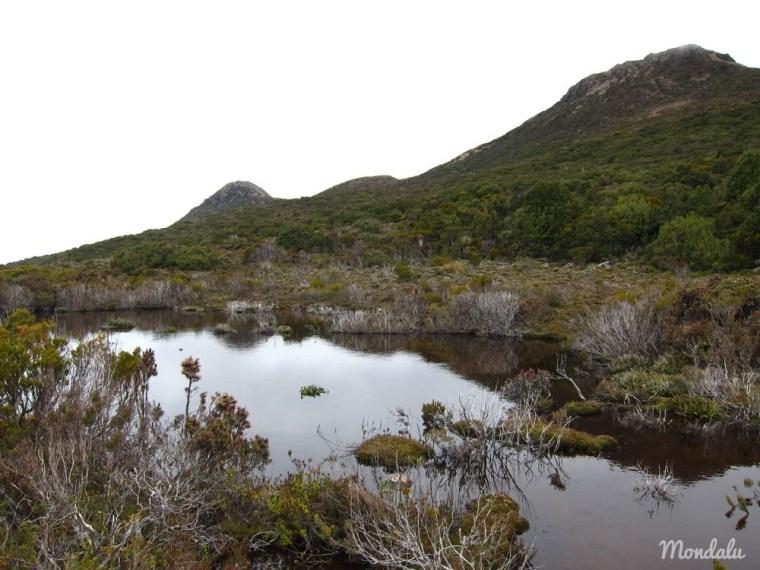 Randonnée au sommet de Hartz Mountain en Tasmanie