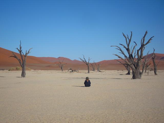 Photo de Deadvlei lors d'un voyage en Namibie en transport en commun