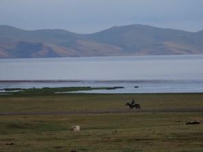 A horseman watches.