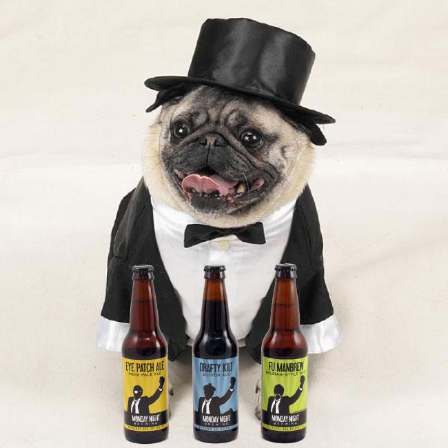 bottles-dog-tuxedo