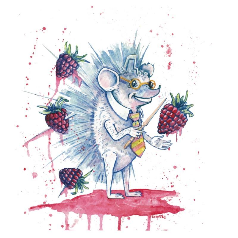Mischief Managed: Raspberry