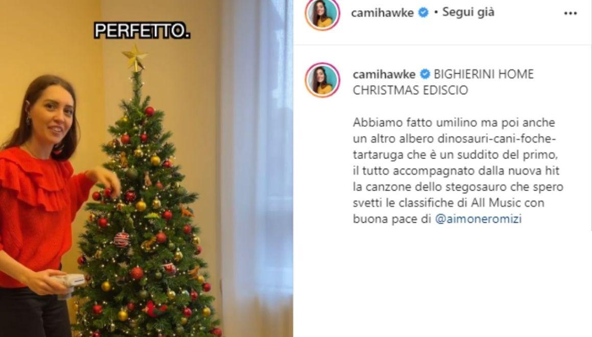 Camihawke