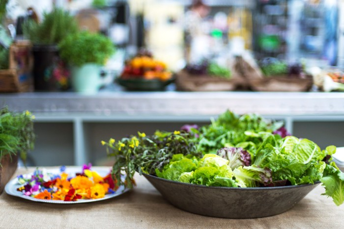 Jamie Oliver Summer Salads Evening-5