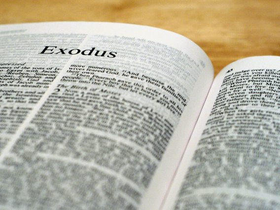 """Image result for book of exodus"""""""