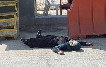 October 17, 2015 Bayan Ayman Abd al-Hadi al-Esseili, 17 years old. Hebron, Killed close to the Wadi al-Ghrus area near illegal settlement of Kiryat Arba settlement.
