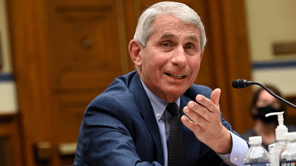 Sorry, there are no COVID bombshells in Dr. Fauci's emails