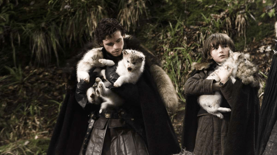 'Game of Thrones' direwolf dog named Odin passes away