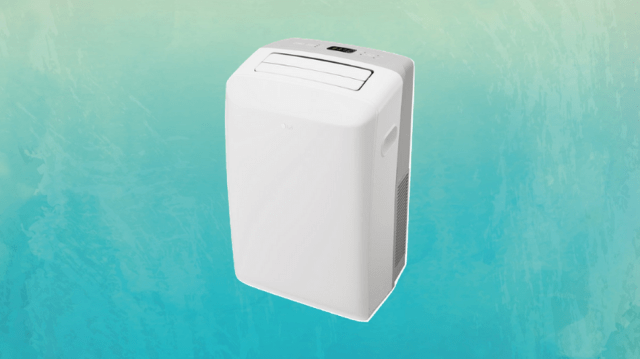 This portable AC doesn't sit in your window.