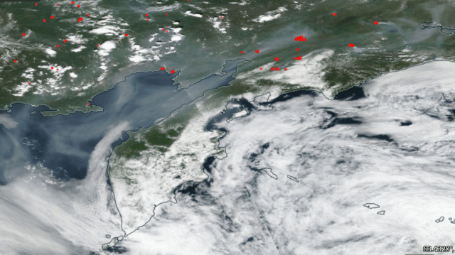 Fires in Siberia on July 13, 2019.