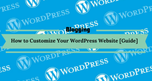 How to Customize Your WordPress Website [Guide]