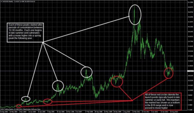 Darren Long  Article -The Bullion Bull Is About to Run 01.20.14