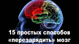 15 простых способов «перезарядить» мозг