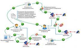 Схемы управления и контроля филиальной сети