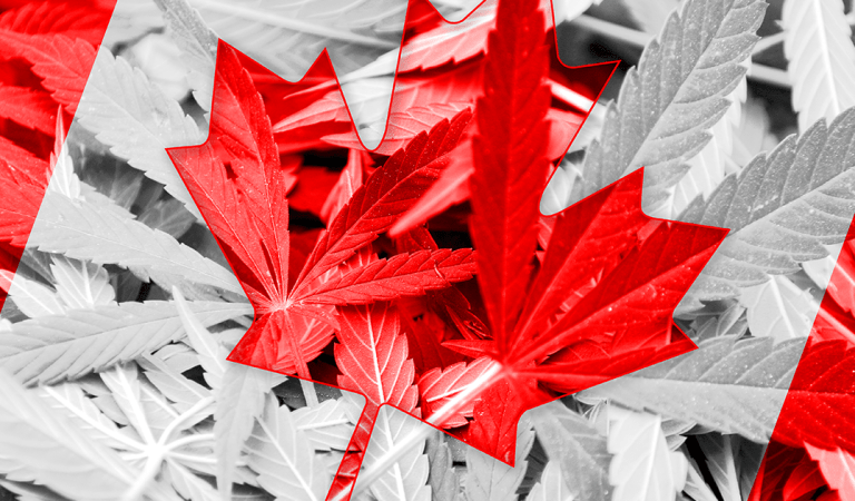 Canada is facing a weed shortage, and it's not going away any time soon