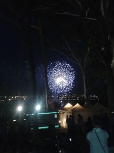 Australia Day fireworks in Kings Park