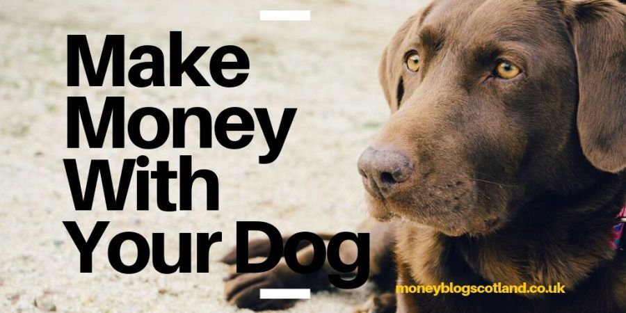 Make Money With Your Dog
