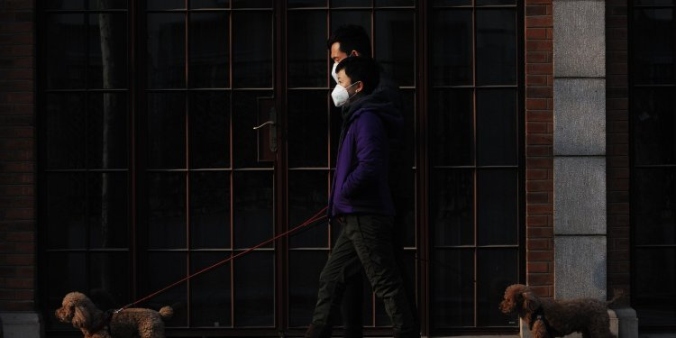 COVID-19: Asian stocks gain on hopes pandemic is approaching peak