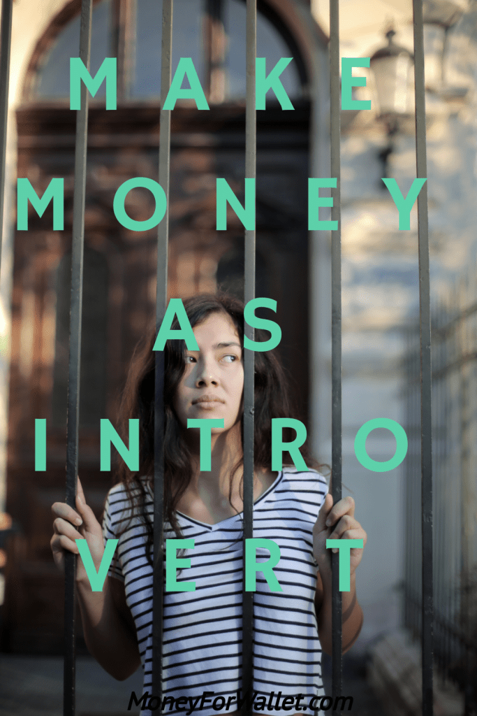 How To Make Money Online As An Introvert