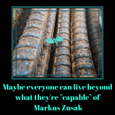 Maybe everyone can live beyond what they're capable of