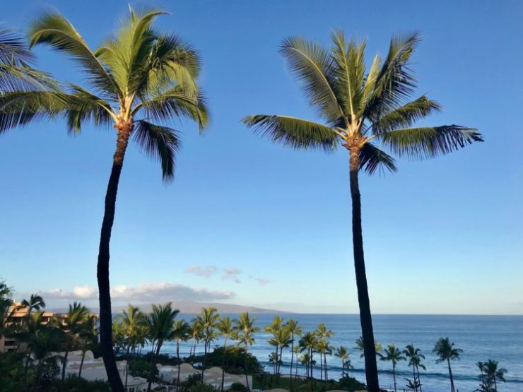 Image result for hotel curtin hawaii