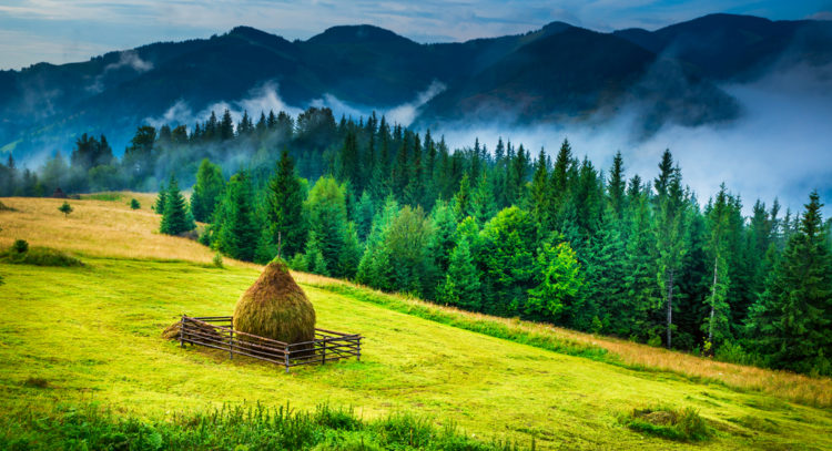 Rural Areas, Romania