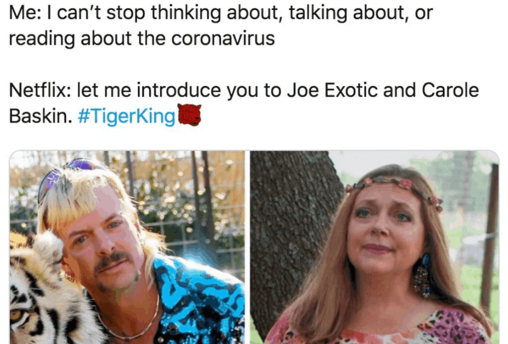 watch tigerking