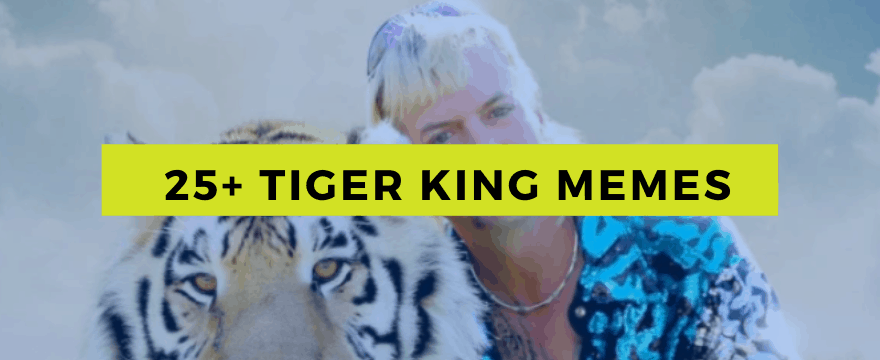 25 Tiger King Memes Best All In One Spot Money Life Wax