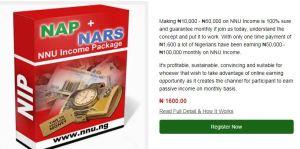 Screenshot001_NNN income Program