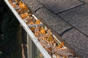 home maintenance gutters save money