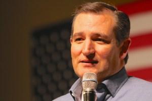 Ted Cruz Net Worth Sources