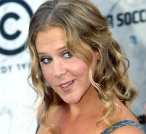 amy schumer net worth facts