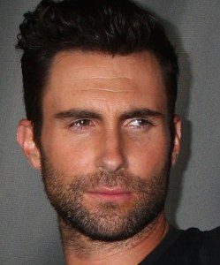 Adam Levine Net Worth from Albums