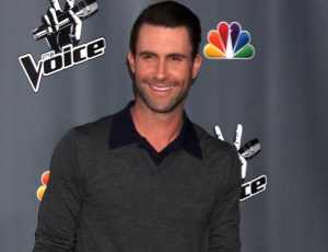 Adam Levine Net Worth from Singles