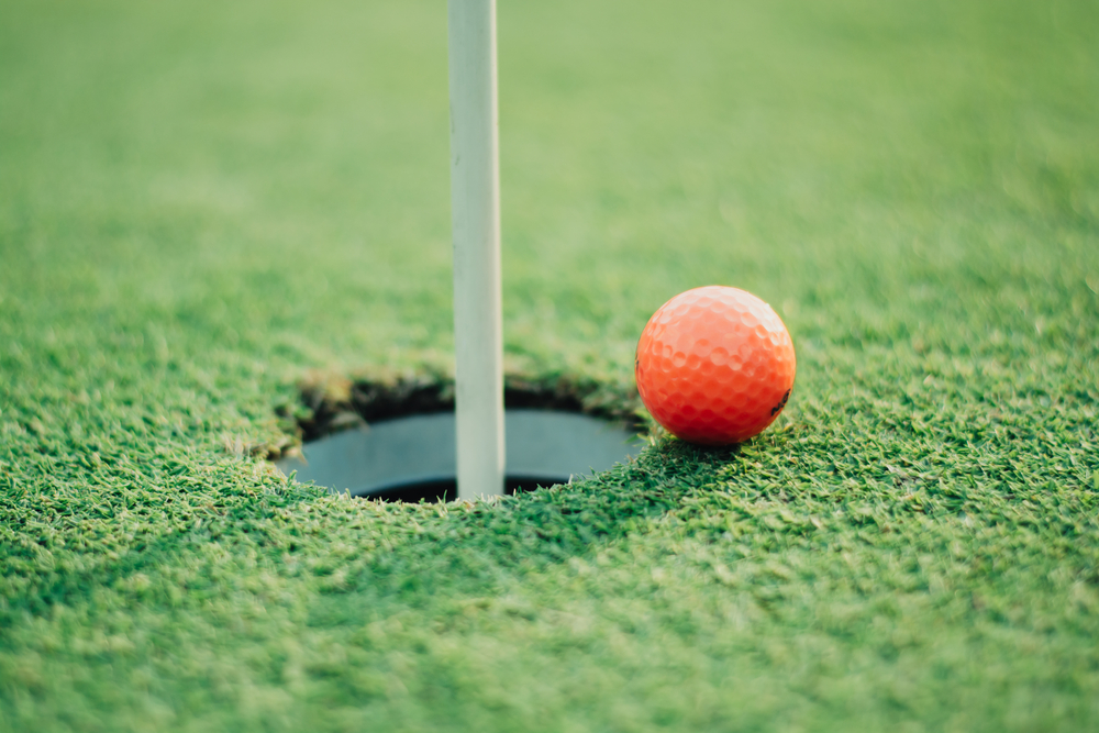 How Much Money do Pro Golfers Make - How Much Golf Do You Playing