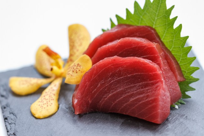 most expensive fish bluefin tuna