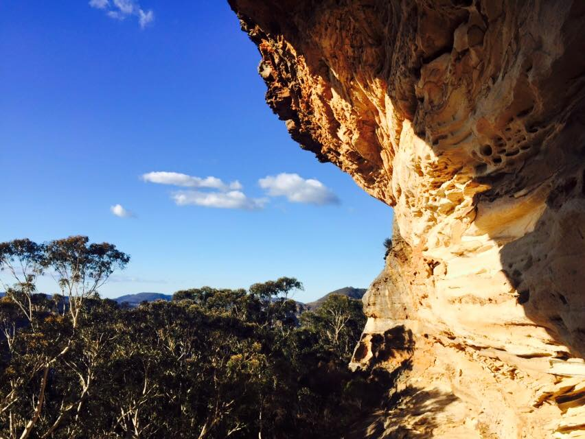 Picture I took while exploring the Blue Mountains in Austraila