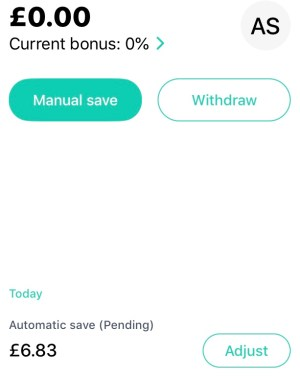 View and Adjust Saving