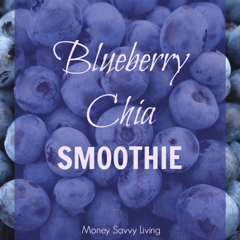 Blueberry Chia Smoothie   Money Savvy Living