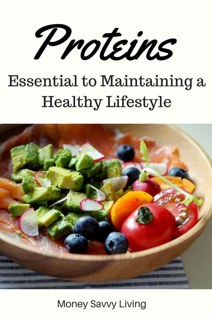 Proteins Essential to Maintaining a Healthy Lifestyle // Money Savvy Living