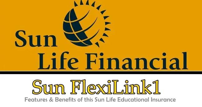 Sun FlexiLink1