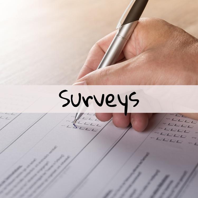MoneySkipper Surveys Page Featured Image