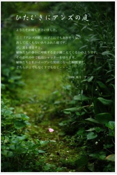 ひたむきにアンズの庭withお金のソムリエ坂下仁.jpg