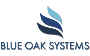 Blue Oak Systems Consolidation Loan