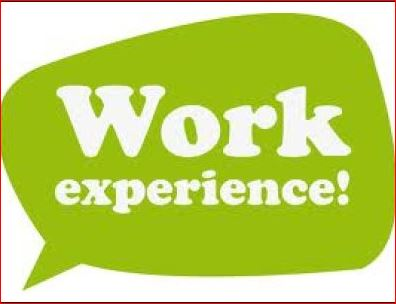 Work Experience-Top Secrets to Get a Promotion